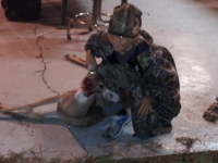 liberty_county_youth_hunt_2012_7